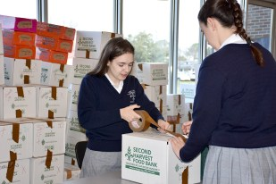 canned_food_drive_6317