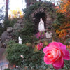 Help keep our Lourdes Grotto beautiful