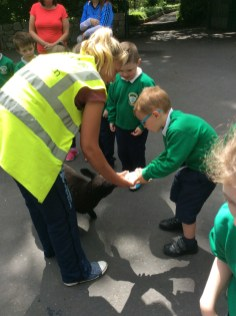2016/17, P1-P3 Trip to Fort Evergreen