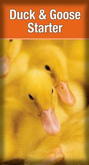 Laucke Duck & Goose Starter - 20kg