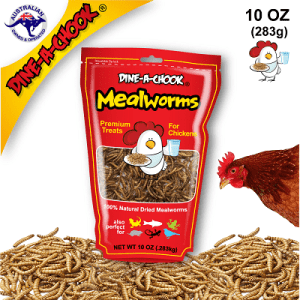 Dried_Mealworms