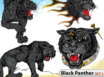 download-black-panther-vector-illustration-s1