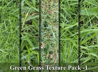green-grass-texture-background-images-pack-1