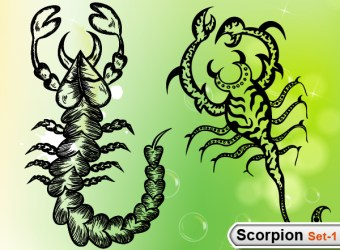 scorpions-vector-illustration-brushes-s1