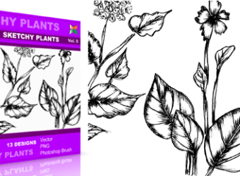 vector_brush_sketchy_plants_5