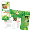 Lawn Maintenance Service Brochure Design
