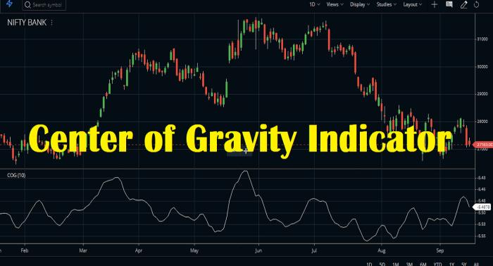 Center Of Gravity Indicator