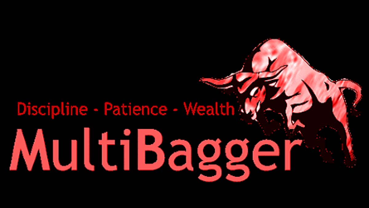 Multibagger Stocks Meaning and Steps to Identify