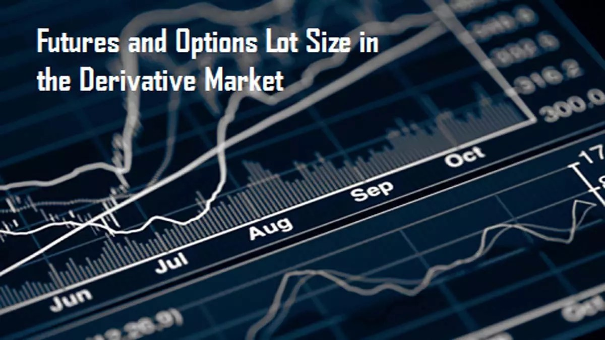 Futures and Options Lot Size in the Derivative Market
