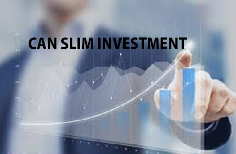 Can Slim Investing System Review and Results in India