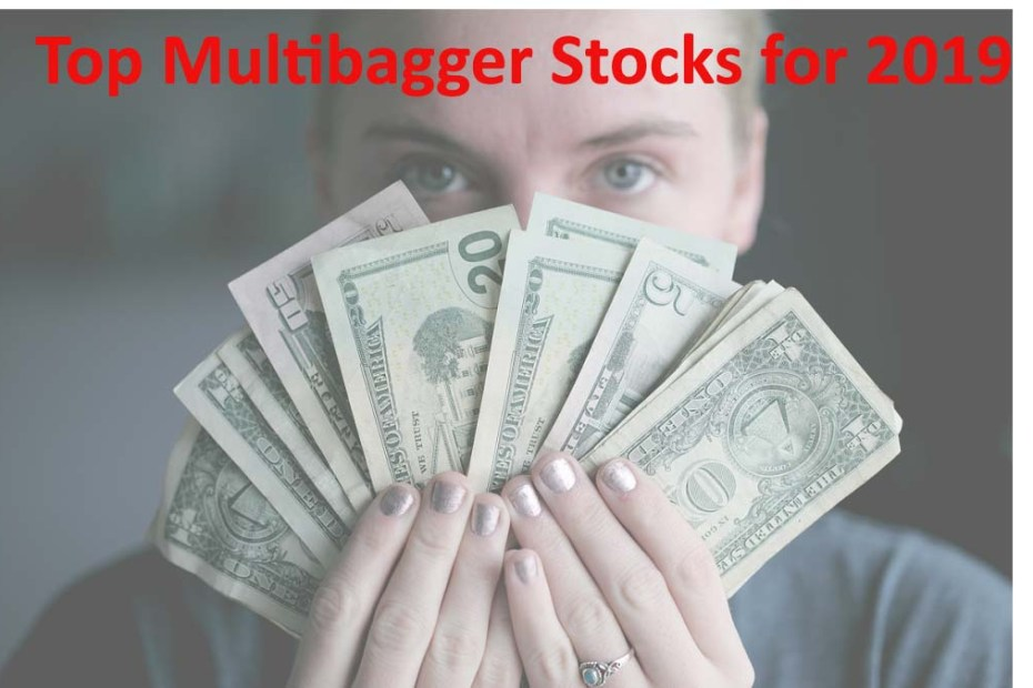Top Multibagger Stocks for 2019