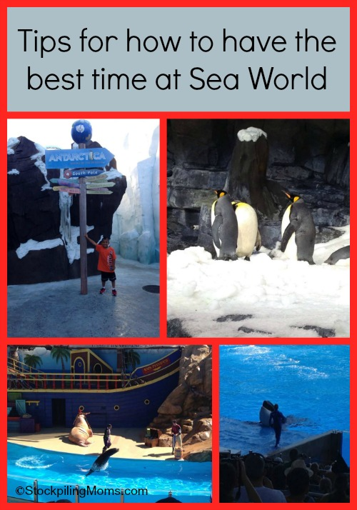 How To Have The Best Trip To SeaWorld Orlando Florida
