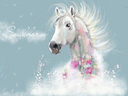Soulhorse Jersey