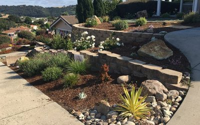 Why Use A Local Landscape Company?