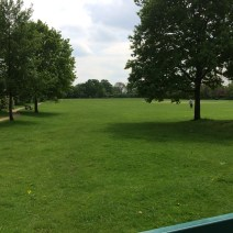 "The Recreation Ground (""The Rec"")"