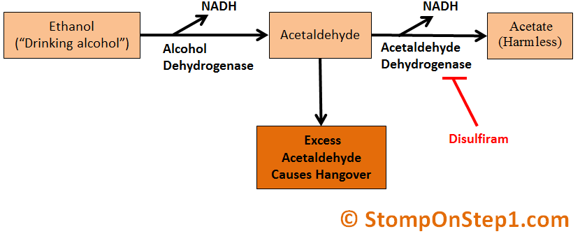 Methanol Vs Ethanol >> Alcoholism Ethanol Metabolism Methanol Poisoning Stomp On Step1