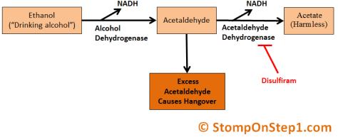 Alcohol Metabolism, Acetaldehyde, Disulfiram, USMLE