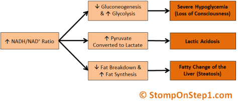 NADH in alcoholism, Alcoholic Hypoglycemia, Lactic Acidosis