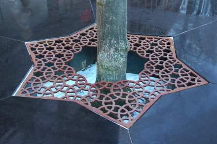 Il disegno appare anche negli anelli di piantagione attorno agli alberi...