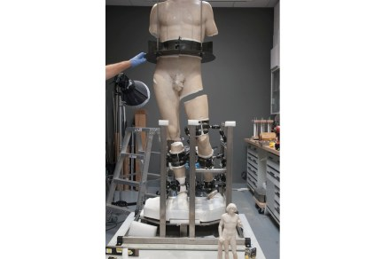 The fragments were fused using an innovative adhesive. For this part of the work, conservators developed a custom made armature to support the figure.