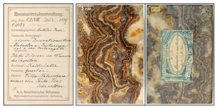 Kalksinter aus Villa Palombara (Italien) verwendet für Caesar-Büsten in den Kapitolinischen Museen, 1889 katalogisiert.  Foto: Naturhistorisches Museum