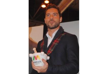 O Prêmio de Comunicação foi para o cantor pop David Bisbal Ferre. Vencedor de um show de talentos, ele vem de Almería e foi homenageado por sua fama internacional.