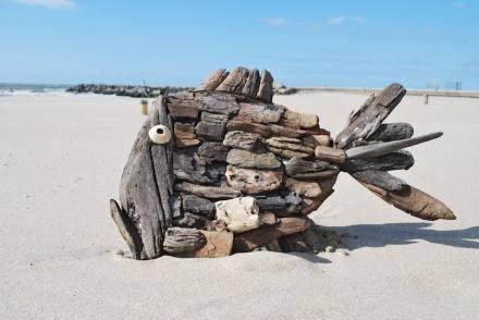 Marcel Dijker: stranded art.