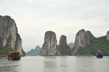 Die Kalksteinfelsen in der Ha Long Bay. Foto: Emilio Labrador / Wikimedia Commons