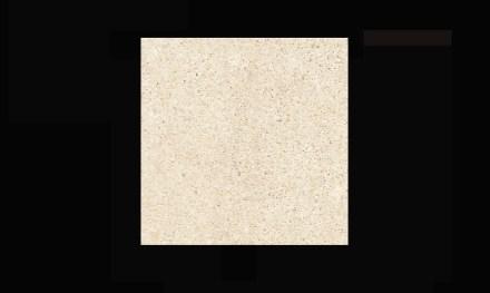 Levantina: Niwala White sandstone.