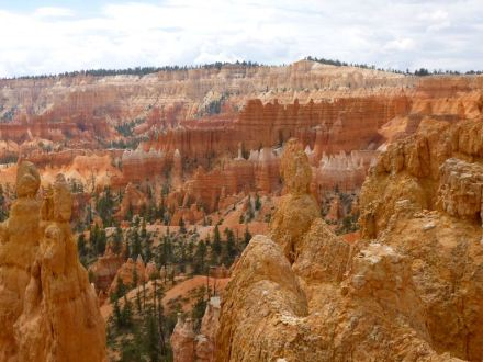 Sedimentary rocks like sandstone often contain high levels of nitrogen. A photo from the Bryce Canyon National Park in Utah, USA. Photo: Katrin and Tina Speicher