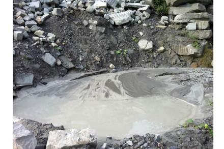 Tiere und Pflanzen nutzen im Steinbruch jene Bereiche, die für den Betrieb nicht wichtig sind.