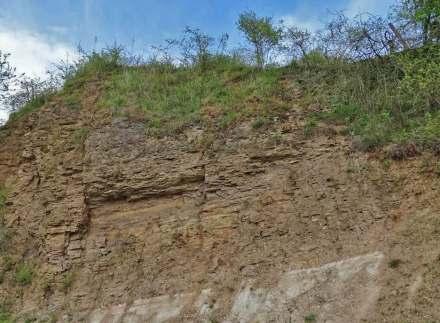 Das Mineral Dolomit macht 90% des Karbonatgesteins mit gleichem Namen aus. Das Bild zeigt eine Felswand im Freigerichter Zechsteindolomit. Foto: Eike Hintz / Wikimedia Commons