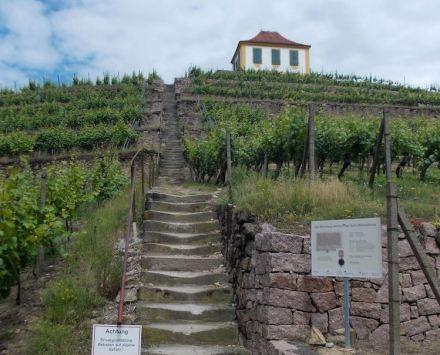 """Der Weinberg """"Schlossberg"""" in Seußlitz in der Gemeinde Nünchritz mit der Luisenburg, einem Weinberghaus aus dem 18. Jahrhundert. Foto: Jwaller / Wikimedia Commons"""