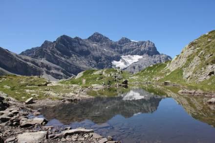 Berglandschaft im Schweizer Wallis: Vielfältige Bodentypen sorgen hier, wie auch in anderen Gebirgen weltweit, für einen vergleichsweise großen Artenreichtum an Wirbeltieren. Foto: Susanne Fritz