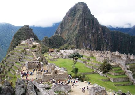 There is a wide variety of biocolonizer species that are putting the conservation of the granite at Machu Picchu at risk. Photo: Héctor Morillas / UPV/EHU