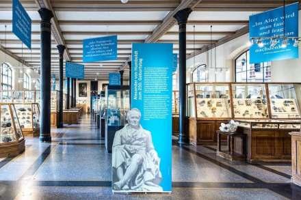 """""""Ausstellung """"Humboldt-Intervention"""" im Berliner Naturkundemuseum. Foto: Museum"""