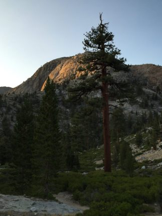 Piute Creek (8)