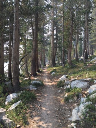 Trail at Sallie Keyes Lakes