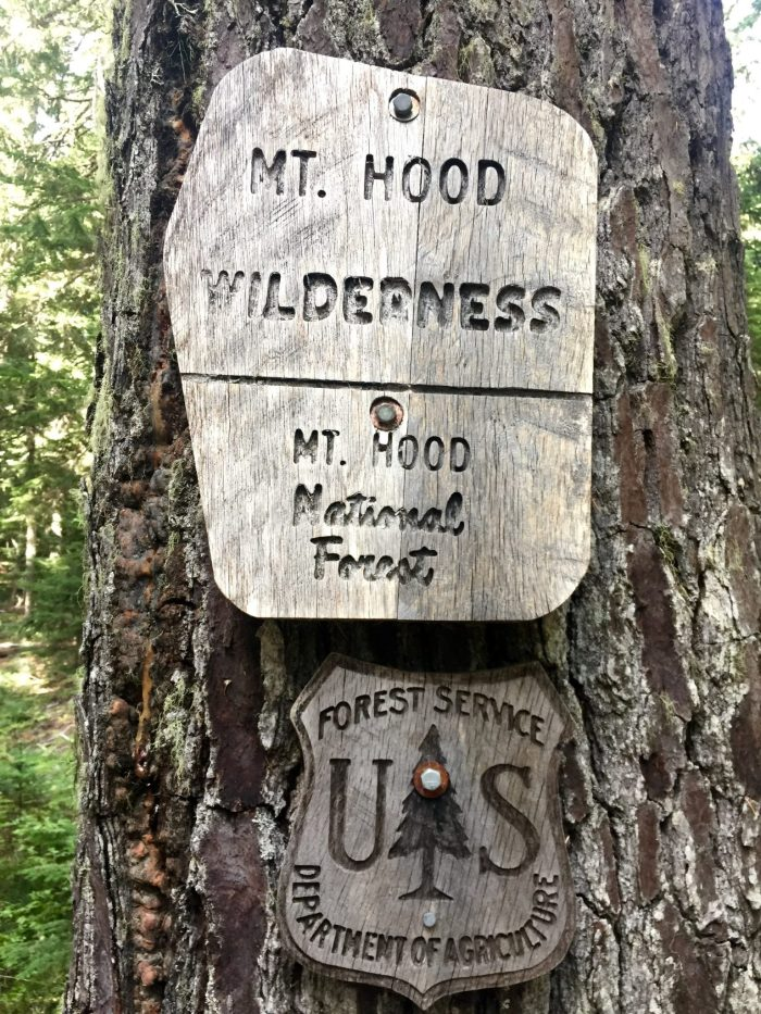 Sign marking boundary of Mt. Hood Wilderness area