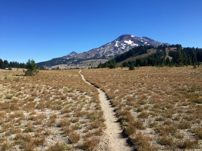 Trail through open meadow with volcanoes towering above