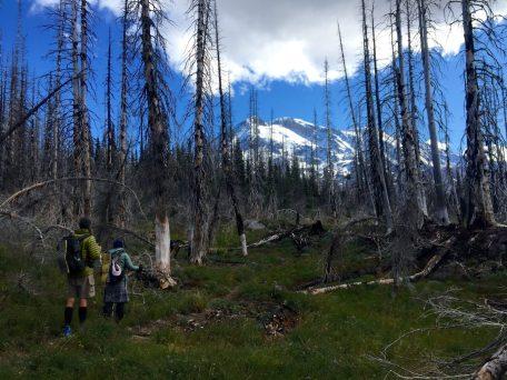 Beardoh and Sweet Pea with Mount Adams looming behind