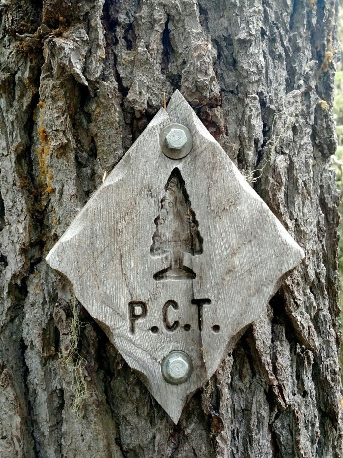 Rare wood carved PCT trail marker nailed to a tree