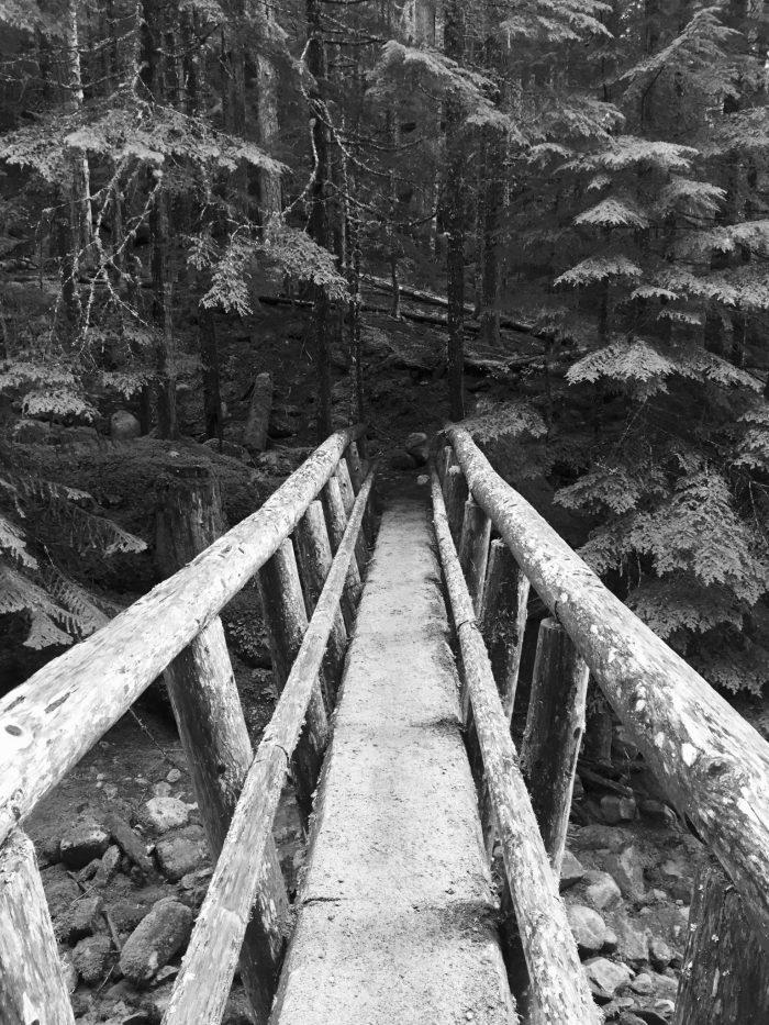 Black and white wooden log bridge crossing Miners Creek