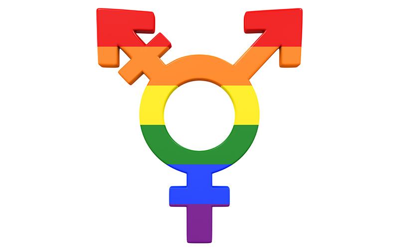 Rainbow Gender