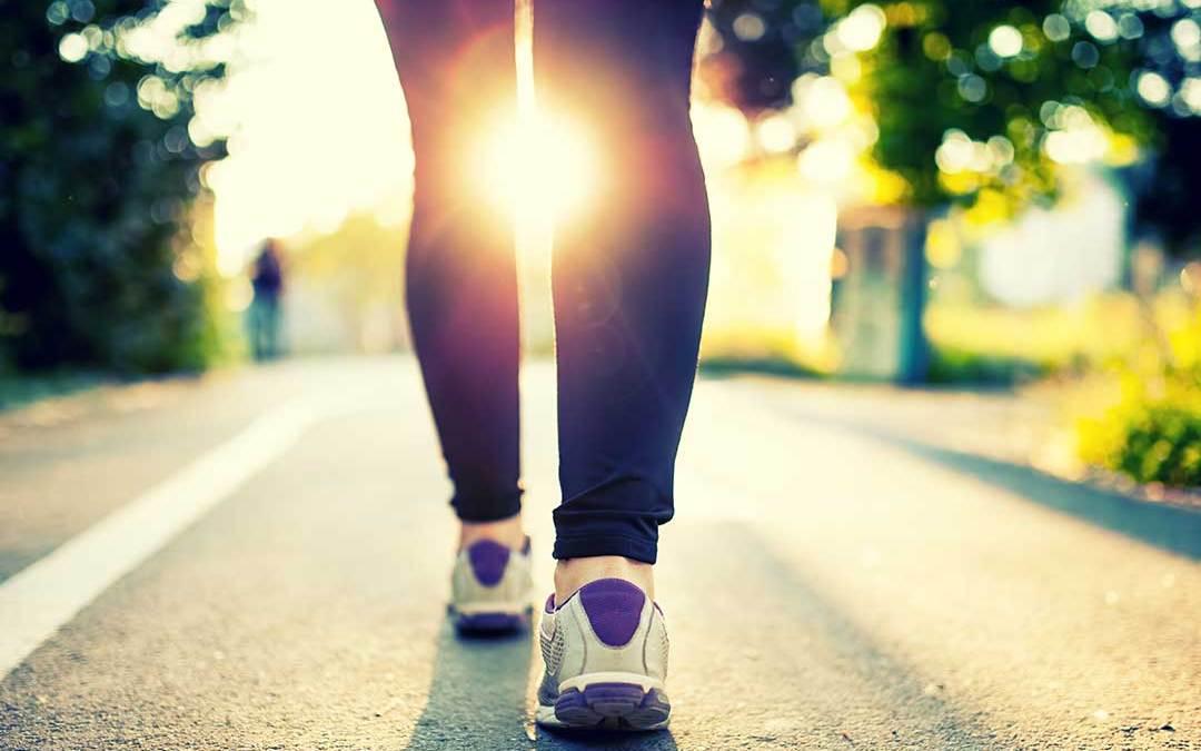 Prays Walk Information and Inspiration