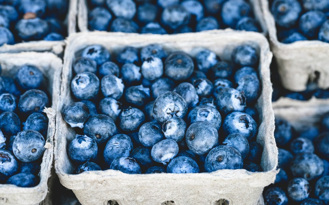Fruitful Promptings: the Holy Spirit and Meryl's Box of Blueberries