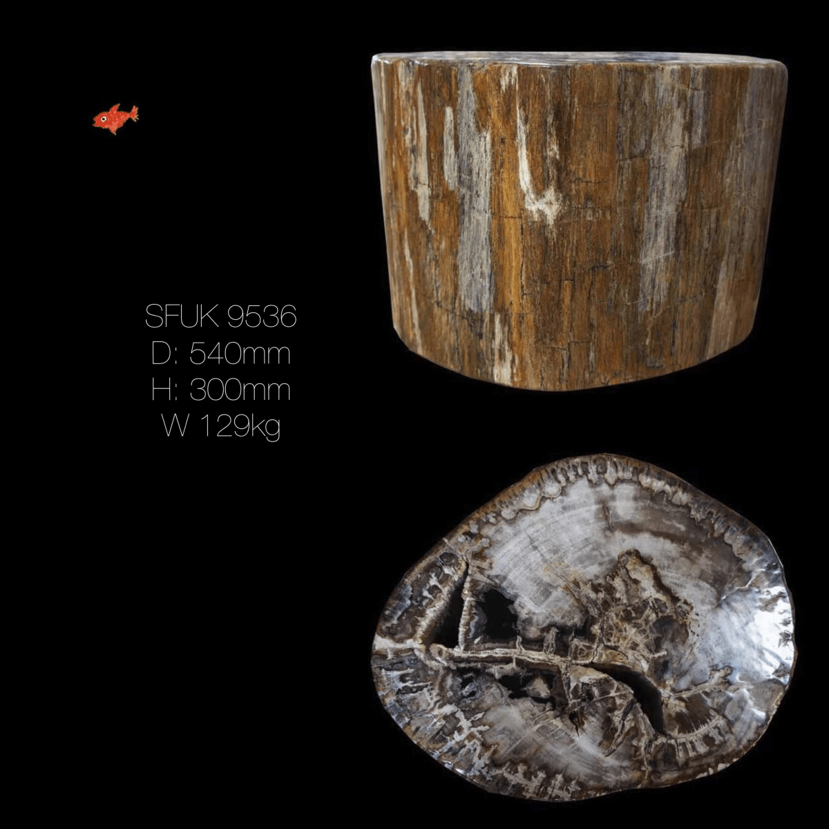 Petrified Wood Table Stool