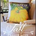 FALL PILLOW LOVE