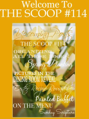 THE SCOOP #114