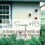 THE SCOOP #113